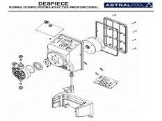 Recambio bomba dosificadora Exactus Proporcional Astralpool